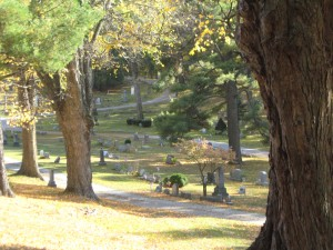jonesville cem view